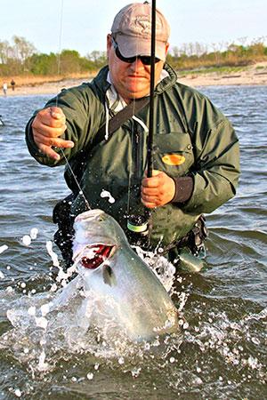 Tom Murray wrangles a feisty bay bluefish.