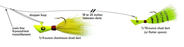 shad-dart rig