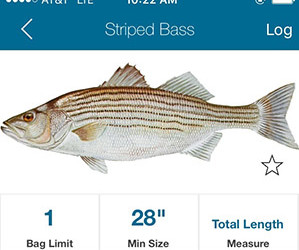 On the water the angler 39 s guide to the northeast for Fish rules app