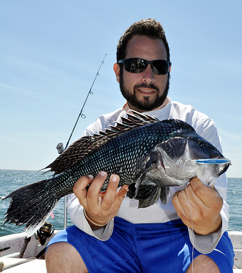 Chris Parisi with a 4-pound sea bass that he hooked on light spinning gear.