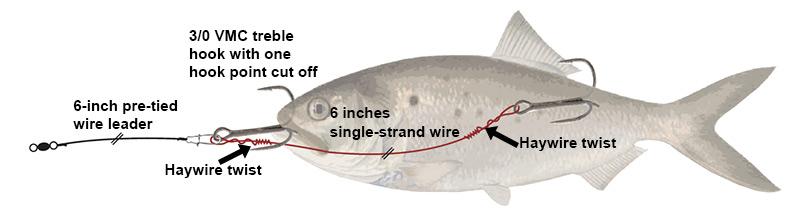 Bluefish Stinger Rig