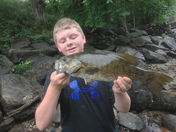 Smallmouth bass in the lower Ashuelot