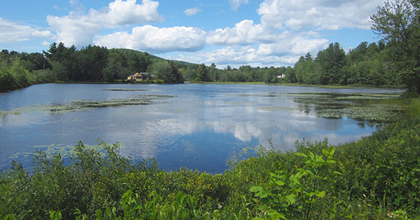 Fish the Ashuelot River above and below the picturesque Village Pond in Marlow for spring trout opportunities.