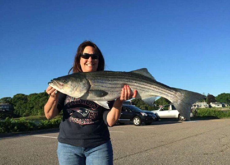 Judy Letteri caught her first Canal striper this week.