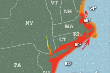 Striper Migration