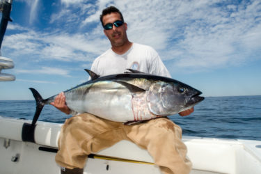 Craig Lorenz caught this South of the Vineyard bluefin on spinning gear while fishing with Captain Dom Petrarca of Coastal Charters Sportfishing on Wednesday.