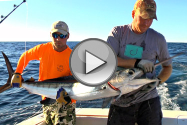 New England Billfish