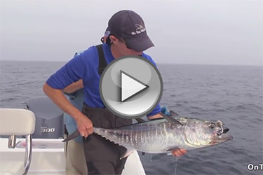 Trolling Tactics for Bluefin Tuna