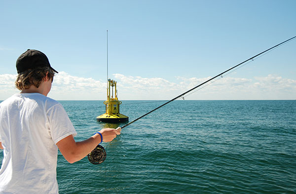 Mahi will orient closely to floating structure, both for forage and protection.