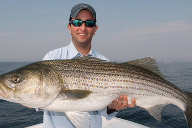 Contrary to most striped bass fishing, the afternoon is generally better than the morning for big bass on bunker.