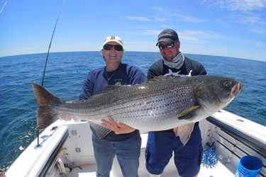 A client gets some help from Captain Jack Sprengel to hold a massive striper.