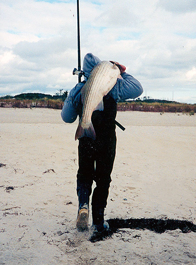 The author with a 20-pound striper caught using a pencil popper worked parallel to the beach.