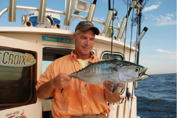 The author holds up a nice New Jersey false albacore.