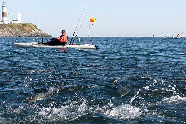 The Kayak Fisherman