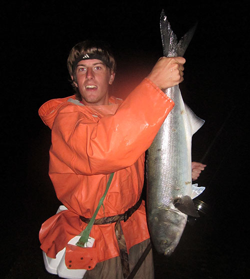 Large bluefish can be found at night after the blitzes subside.