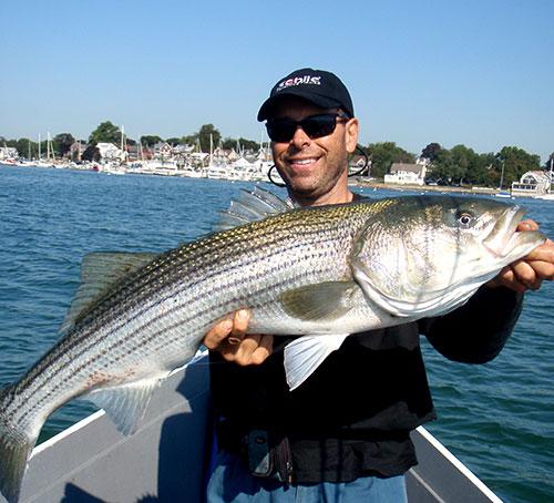 Baitfish will be abundant in Boston Harbor in September, and big bass will be feeding heavily.