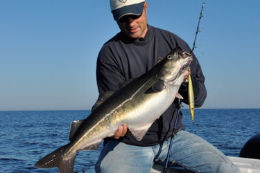Take advantage of any unseasonably warm days in late October to go offshore and jig for pollock.