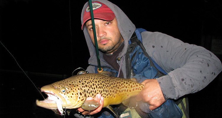 Topwater trout
