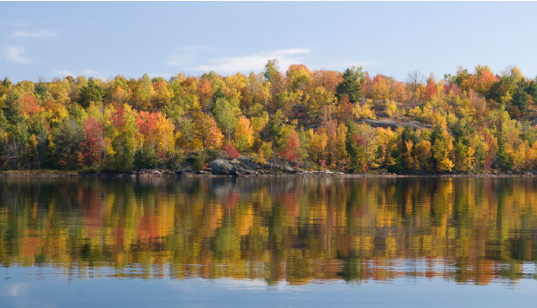 Fishing in autumn provides some picturesque scenery.