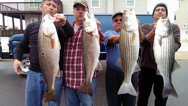 Cape May mixed bag