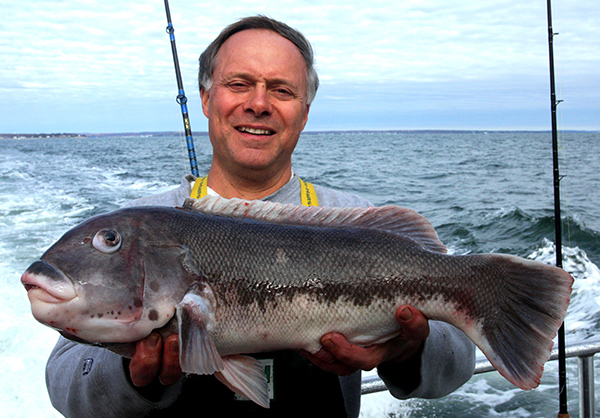 Huge lips, white belly strip and a broad tail—that's the  kind of blackfish it takes to win a pool aboard Captain Rich Jensen's Orient Point charter boat, Nancy Ann IV. This tog fell to angler Tom Meoli.