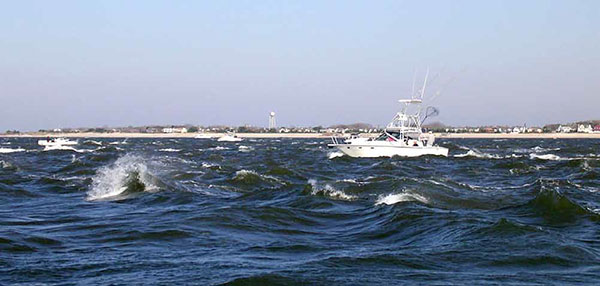Big numbers and big fish are a possibility in the Cape May rips.