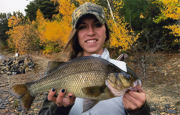 On October 16, 2016, Val Percuoco of Leominster landed the new Massachusetts Record for White Perch!