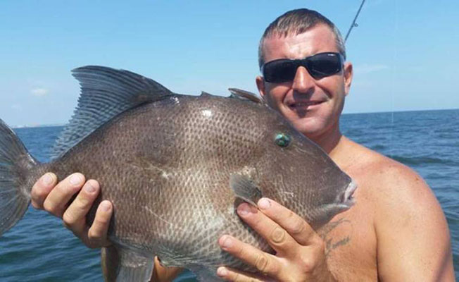 New jersey angler lands state record gray triggerfish on for Nys saltwater fishing permit