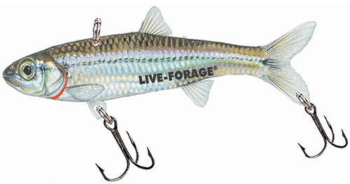 Northland Fish-Fry Minnow-Trap