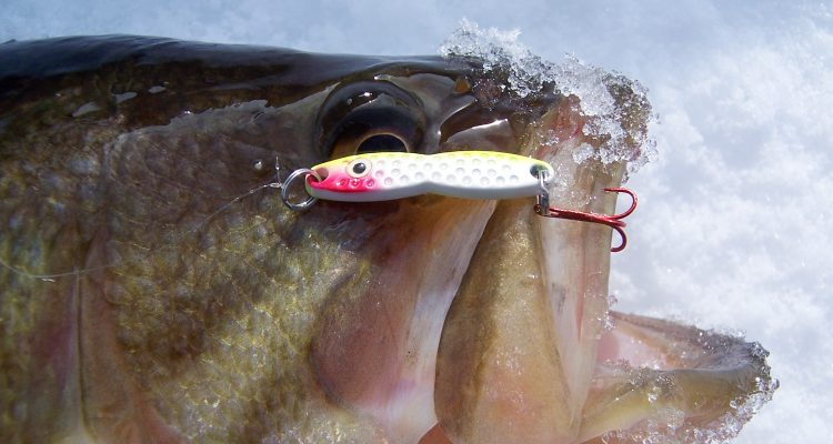 The PK Flutterfish perfectly mimics a dying baitfish and draws strikes from fish of all sizes.