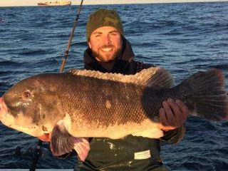 Monster NJ blackfish