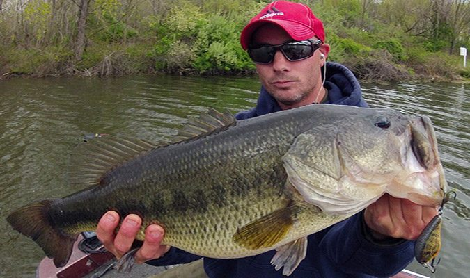 After the spawn, big bass set up in structure adjacent to coves to ambush spawning bluegills.