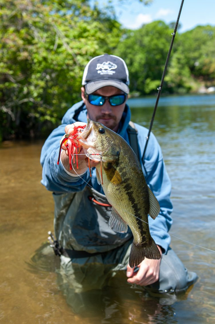 A largemouth caught on a red spinnerbait.