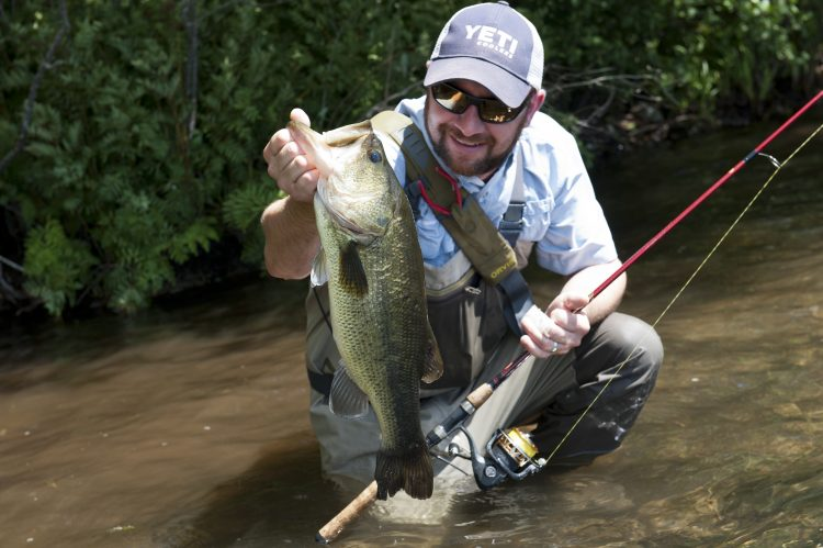 Fishing crankbaits along weed edges is a proven summertime tactic for big largemouths.