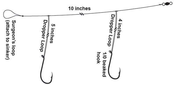 Basic High-Low Rig for porgies and sea bass