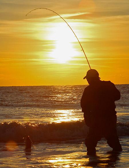 High-sticking when landing a bass in a big surf is a recipe for a broken rod.