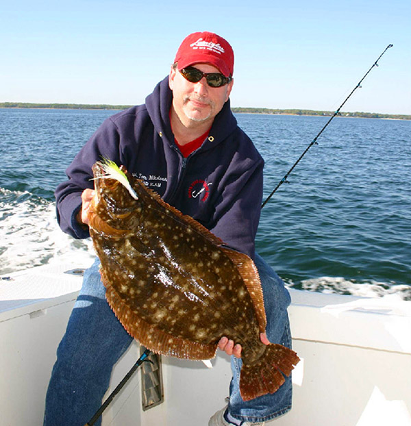 Big fluke will often lurk in the same hang-outs as sea bass and porgies.