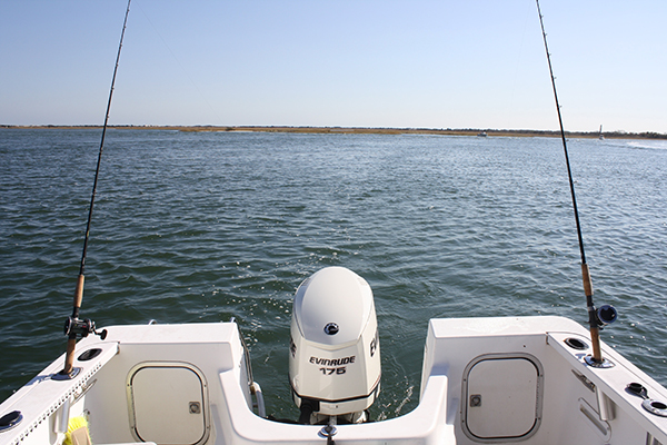 Catching the first striper of the spring is as easy as anchoring over a muddy flat and sending out the clam chum.