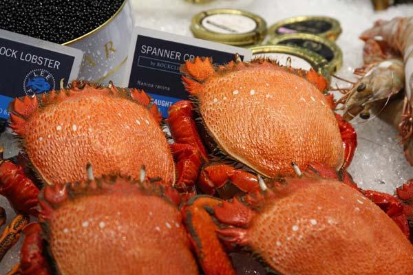 spanner crabs