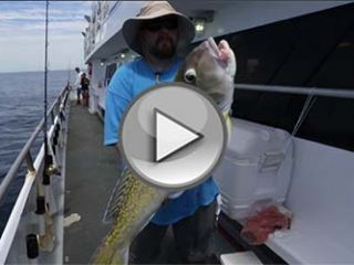 On The Water Adventure's Presents Offshore Tilefish