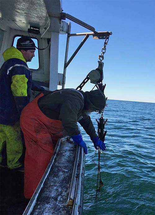 Fishing gear recovery project commences in cape cod bay for Cod fishing ri