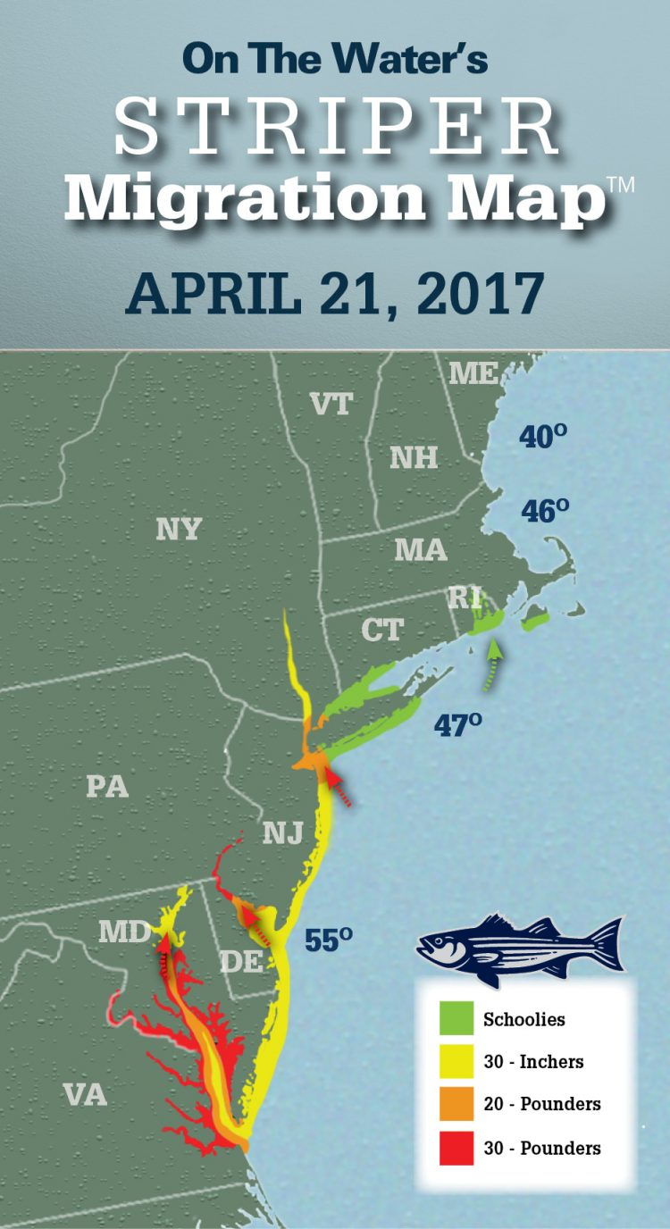 Striper migration map april 21 2017 article fri 21 for Nj shore fishing report