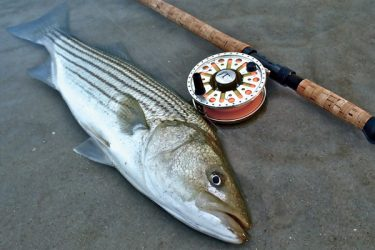 Give Spey casting a try and you may find yourself spending less time casting and more time fishing.