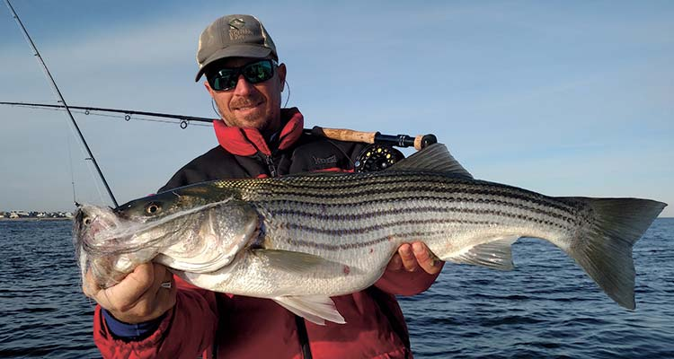 Tips and gear recommendations to put you in position to catch the striper of a lifetime on a fly fishing rod.