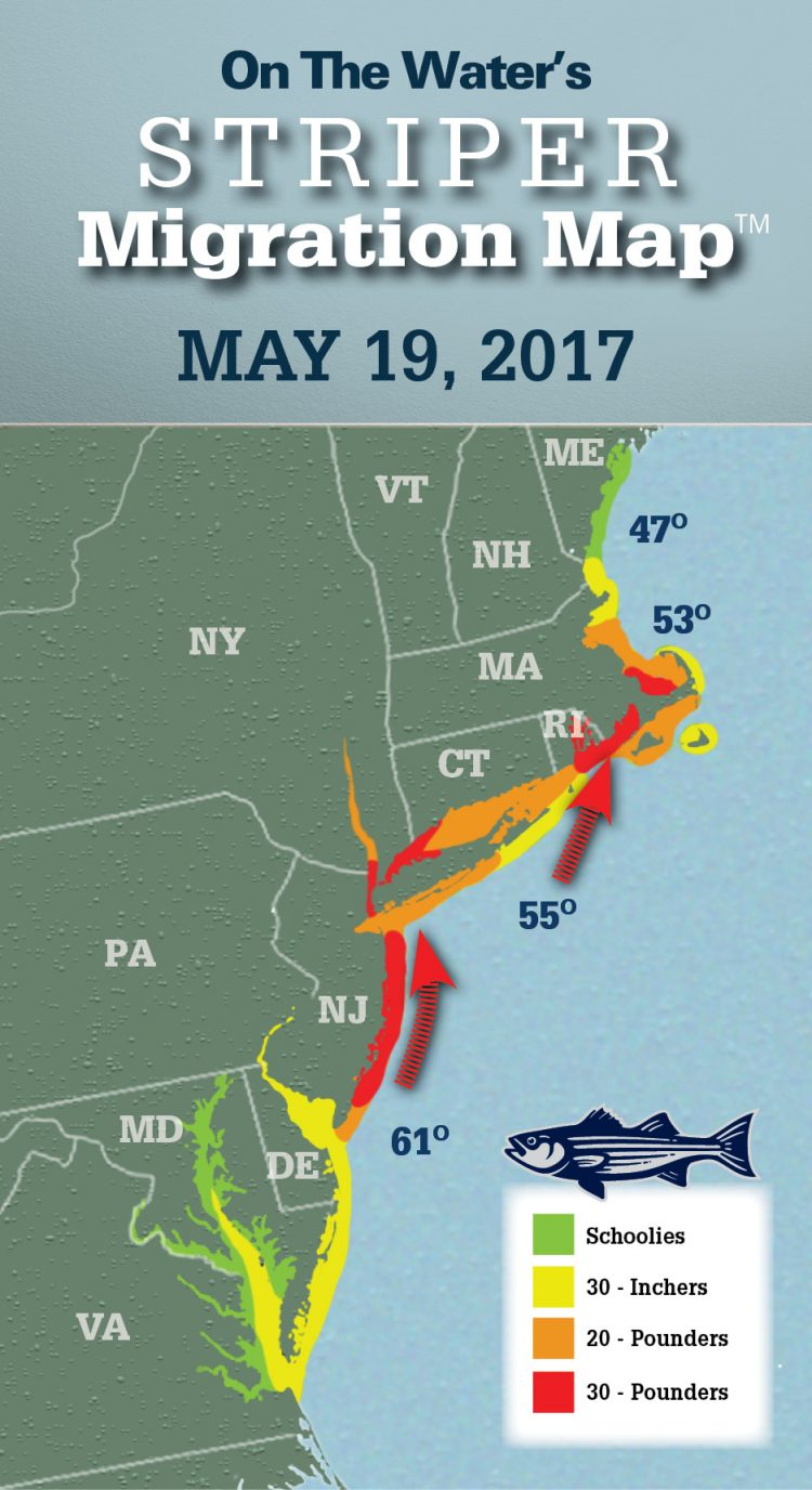 Striper migration map may 19 2017 article fri 19 for Chesapeake bay fishing map