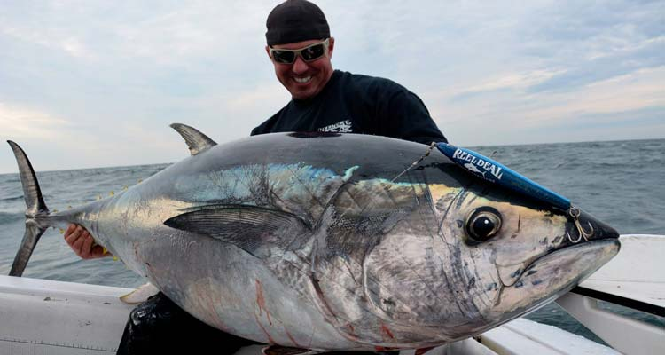 Rhode Island Marine Fisheries