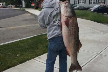 Angler Joe Kelly leaving Fore River B&T in Quincy with a 46 1/2 pound cow he caught on mackerel chunk!