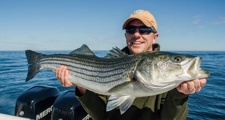 the summer of striper tips for a perfect june on the water