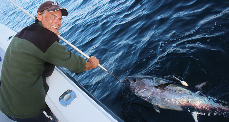 Satellite-tagging provides key insights into light-tackle bluefin tuna post-release survival.