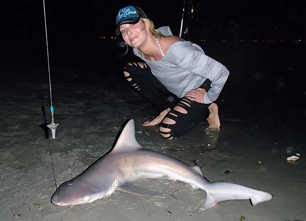 Sharks regularly enter inlets and bays after dark.